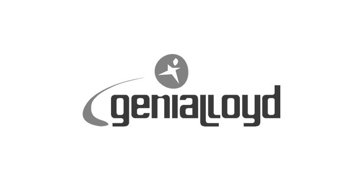 Partners Vi Genialloyd